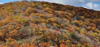 """""""바야흐로 단풍의 계절""""…설악산·계룡산 등 전국에 등산객 북적"""