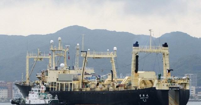 일본 저격한 北신문, '日 상업적 고래잡이 국제사회 나서야'
