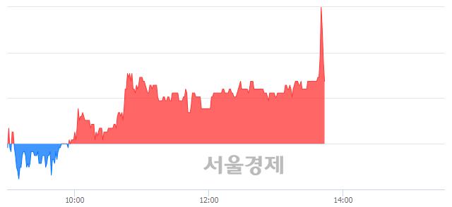 코셀루메드, 매수잔량 466% 급증