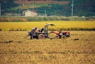 가을 수확기 농기계 사고 빈번…농기계 사고에 주의