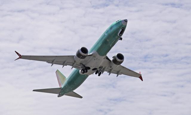보잉CEO, 737맥스 두 차례 추락 사고에 '실수했다는 점 안다'