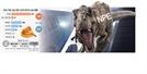 [탐사S] ICT 다음 타깃은 바이오…中 NPE 韓기업 경계대상 1호
