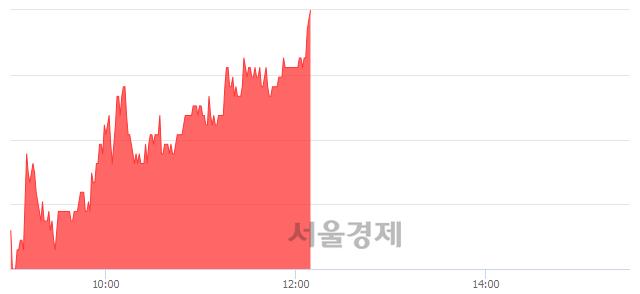코제노레이, 전일 대비 8.04% 상승.. 일일회전율은 2.20% 기록