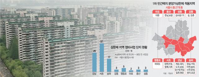 개포 등 서울 27곳 … '로또 광풍' 부르는 상한제