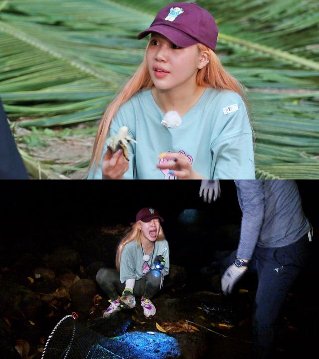 """'정법 in 순다열도' 주이, 물고기 공포증... """"물고기 그림도 못 본다"""" 깜짝 고백"""