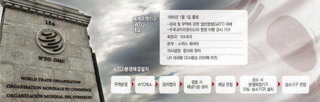 [뒷북경제]WTO 한달 뒤 마비된다는데..韓 영향은