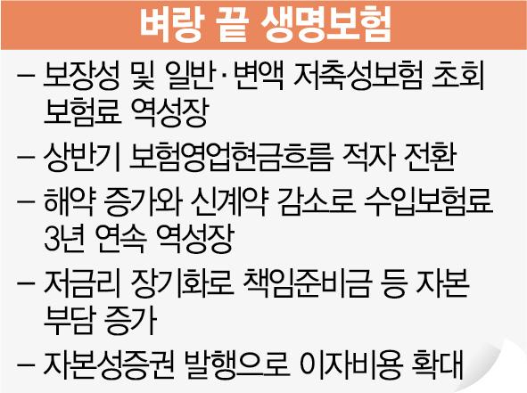 생보사 내달 '자정 결의'...'IFRS17 도입도 유예를'