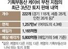 [단독] 2만8,000명에 '여의도 4배 땅' 지분 쪼개 판 기획부동산