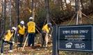 SBI저축銀, 사회공헌 캠페인 '암은행나무 이식사업' 진행