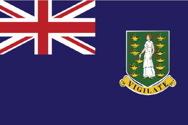 라이프랩스·영국령 버진아일랜드, 미국 달러에 고정된 디지털 통화 발행한다