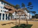 구글 본사 앞 공룡, 경북 도청에 나타난 까닭은?