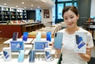 삼성 갤A51 해외 진출하자 샤오미 가성비폰 국내 공략