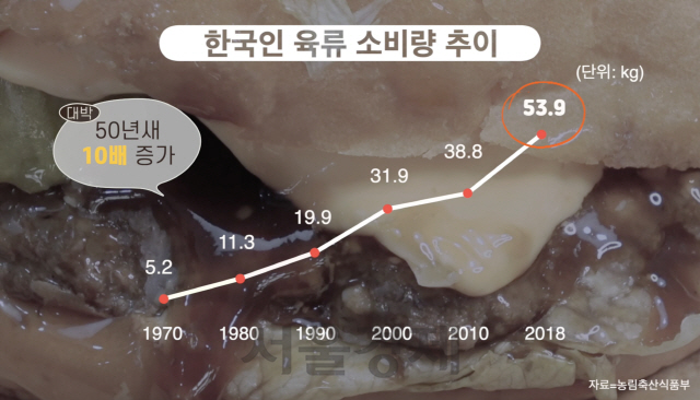 송년회 단골메뉴 '삼소·치맥'…환경파괴 주범이라고?[썸오리지널스]