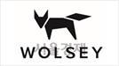 골프웨어 '울시' 비엠글로벌, 공개 매각 진행