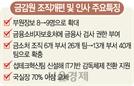 """DLF·라임 사건 재발 막는다"" 금감원, 소비자보호조직 두배로"