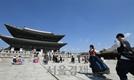 코로나바이러스에 궁궐·미술관·박물관도 대응