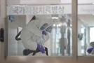 [속보] 울산대병원 의사 코로나19 양성 판정…응급실 폐쇄