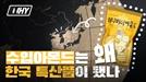 [영상] 수입 아몬드는 왜 한국의 특산품이 됐을까?[WHY]