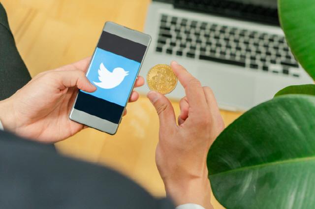 '비트코인 반감기가 이거였어?'…폭락장에 남긴 전문가들의 트윗