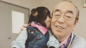 日국민 코미디언 시무라켄, 코로나19 확진 1주일 만에 사망