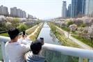 '사회적 거리두기'로 임시 폐쇄된 양재천