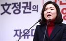 """류여해, '썩을X들' 발언 김무성 고소 """"'류여해TV를 극우 유튜브로 매도하고 모욕"""""""