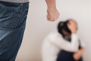 행인 오가는 번화가 인근서 처음 만난 여성 성폭행한 20대 검거