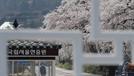 서울현충원, 코로나19 확산에 6월 한시적 입장제한