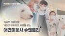 [잡플리] 구독자 145만명 슈앤트리가 전하는 애견미용사란?