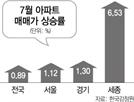 초강력 대책 내놨지만...7월 아파트값 111개월 만에 최대 상승