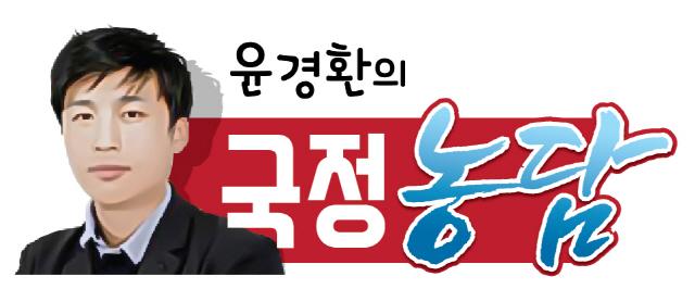 [국정농담] 文정권은 순간이지만 서울 부동산은 역시 영원한가