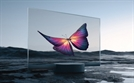 [단독] 샤오미 세계 첫 투명 OLED TV, LG디스플레이 패널 쓴다