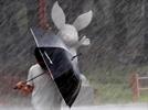 태풍 '바비' 다음주 상륙 가능성... 초강력 태풍 1호 되나 우려