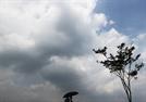 전국 33도 웃도는 무더위…태풍 '바비' 영향 제주도는 비