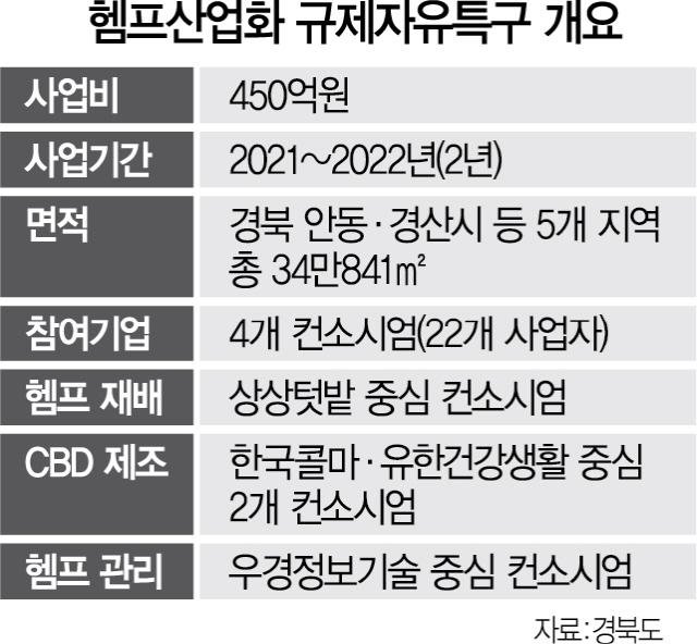 '대마 의료용 산업화' 첫 시도…기대감 높아지는 안동 '헴프 특구'
