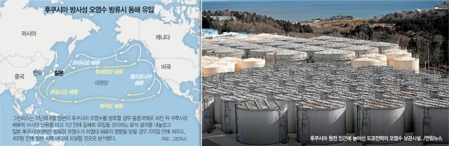 방류 후쿠시마 오염수, 220일이면 제주 앞바다 온다