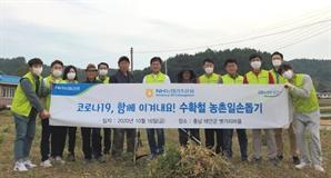 [사진]NH농협리츠운용, 수확철 농촌 일손 돕기