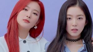 레드벨벳 아이린·슬기가 갑질?…15년차 에디터 폭로 '일파만파'