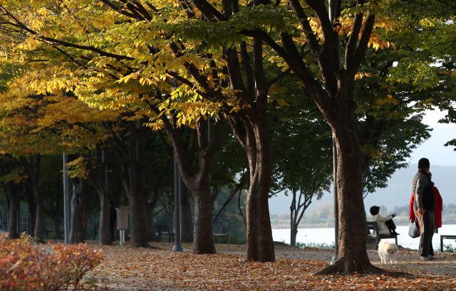[오늘의 날씨] 서울 아침기온 4도…강원 북부에는 눈