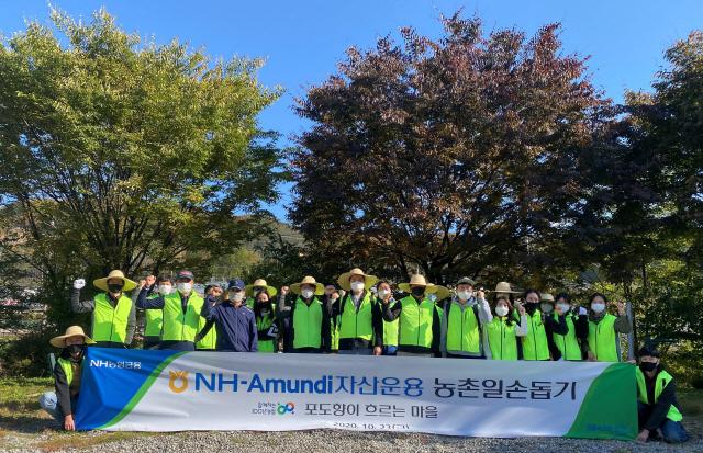 NH-아문디자산운용, 가평 자매결연 마을 일손돕기 진행