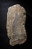 공사장에서 주워온 돌이 가장 오래된 신라비석