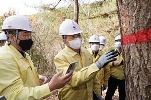 박종호 산림청장, 여수시 소나무재선충병 방제 현장 점검