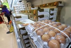 """고병원성 AI에 마트·편의점 달걀 판매 제한…""""사재기 방지"""""""