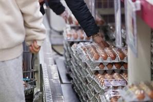 '金달걀' 잡는다… 달걀·가공품 5만톤 수입관세 면제