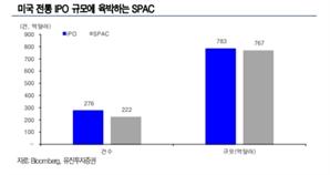"""""""제2의  테슬라' 선점하자""""....'美 스팩주' 쇼핑 나선 서학개미"""