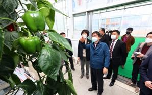 허태웅 농진청장, 전북 파프리카시험장·귀농창업 우수 농장 방문
