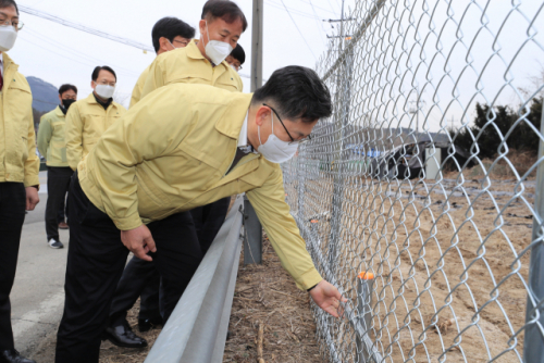봄철 멧돼지 출산기…ASF 방역 강화한다