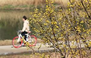 """완연한 봄 날씨에 주말 나들이 증가…당국 """"방역수칙 지켜달라"""""""