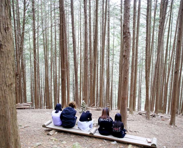 [休-완주]꽃보다 숲…빽빽한 숲에서 빡빡한 삶을 잊다