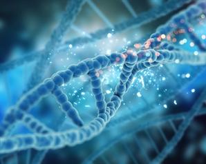 메드팩토, 'BAG2' 표적 암 항체치료제 특허 취득